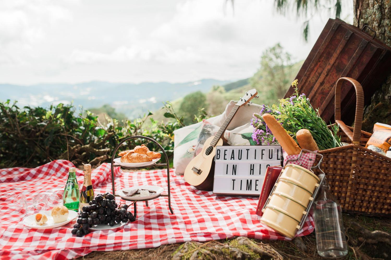 camerons-highland-engagement-pre-wedding-kuala-lumpur-singapore-photographer-lifestyle-pre-wedding-picnic-theme