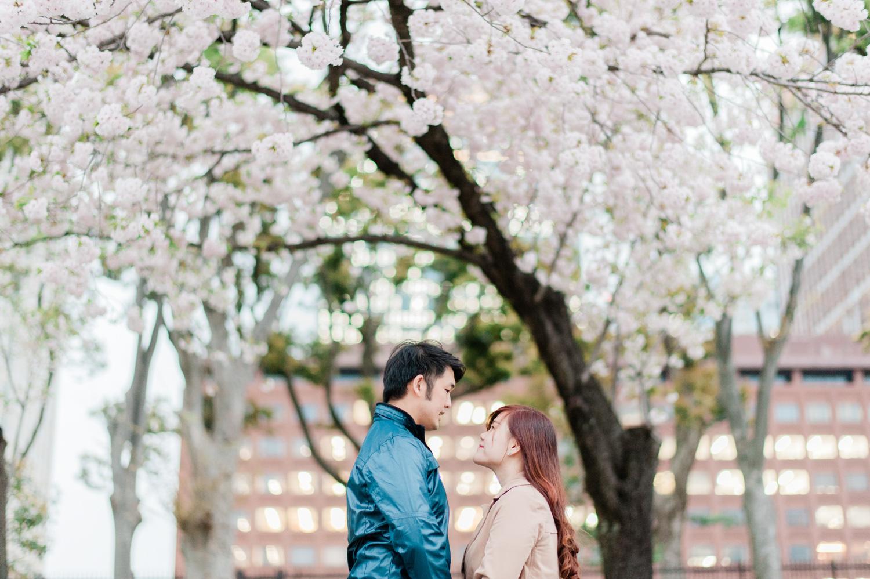 japan-tokyo-casual-engagement-pre-wedding-destination-spring-season-sakura-lifestyle-candid-theme